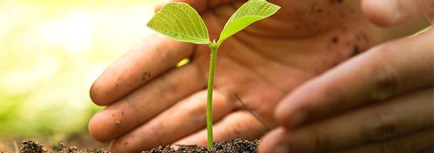 Gestao-Licenciamento-e-Auditoria-Ambiental
