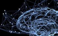 neuroaprendizagem-e-praticas-pedagogicas-pequena