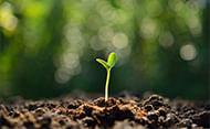 gestao-ambiental-aplicada-a-industria-pequena