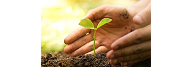 gestao-licenciamento-e-auditoria-ambiental-pequena