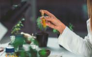 Homeopatia-P